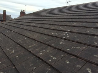 Moss free roof tiles