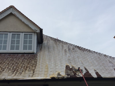 Softwash Roof Cleaning in Newport, Shropshire
